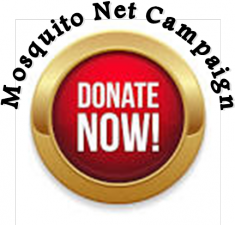 Donate to our mosquito net campaign